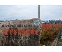 杭州基地展示